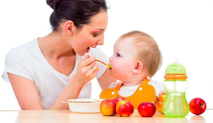 Introducción de los alimentos sólidos: principios básicos