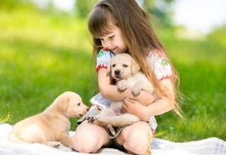 Convivir con mascotas: beneficios para los niños