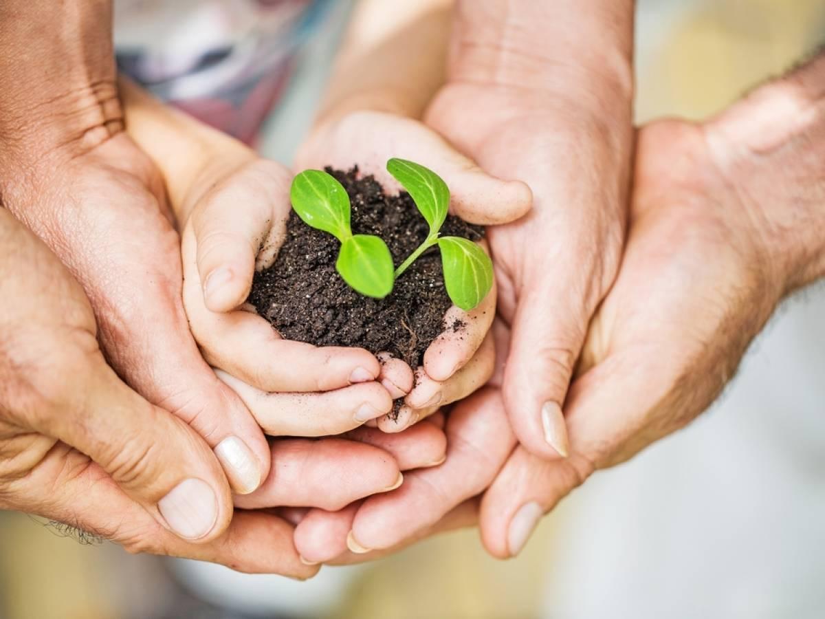 Cuida El Medio Ambiente En Familia Revista Pediatría Y Familia