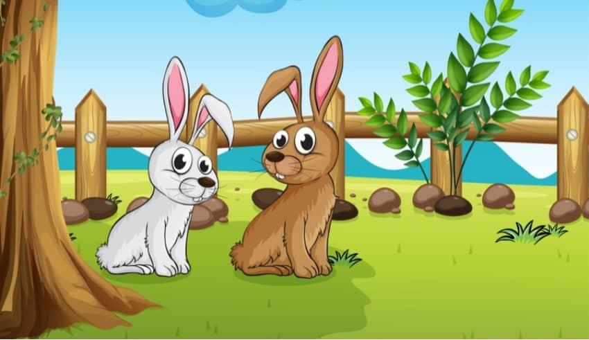 La liebre veloz y el conejo envidioso. Cuento infantil sobre los celos