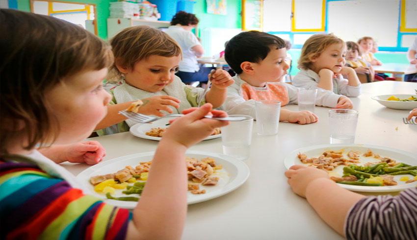 Es necesario que la población pediátrica tenga un equilibrio en su dieta, ya que el organismo en ciertas edades necesita la absorción de vitaminas, minerales, fibras y proteínas.